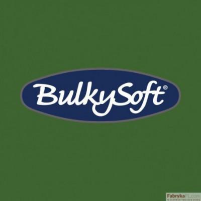 BulkySoft Serwetki 24x24, 2 warstwy 100 sztuk zielony