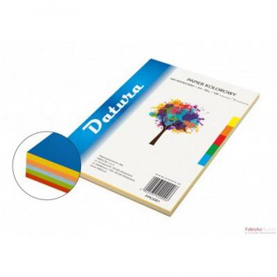 Papier xero kolorowy DATURA A4 80g (100) mix intensywny